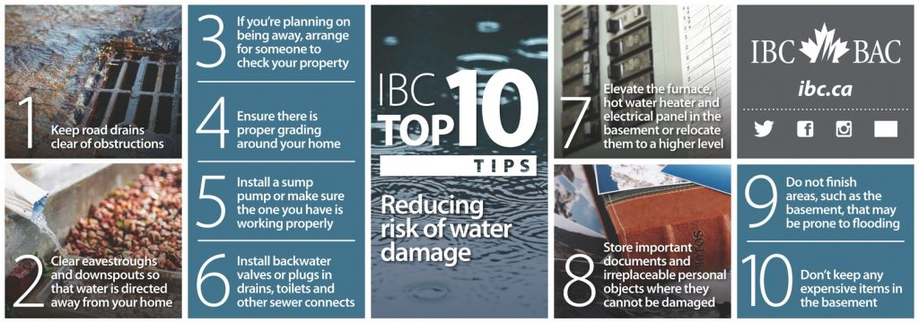 Top Ten Tips to Reduce Your Risk of Water Damage (IBC)